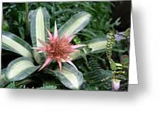 Us Botanic Garden - 121232 Greeting Card