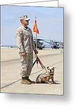 U.s. Marine And The Official Mascot Greeting Card