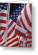 Usa Flags 01 Greeting Card
