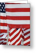 Usa Flags 02 Greeting Card