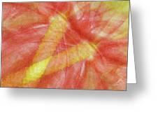 Usa, Hawaii Anthurium Flower Montage Greeting Card