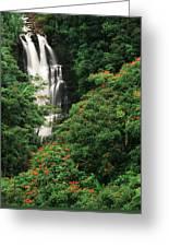 Usa, Hawaii Islands, View Of Nanue Greeting Card