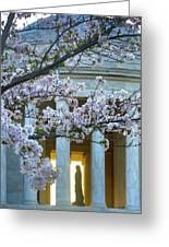 Usa, Washington Dc, Jefferson Memorial Greeting Card