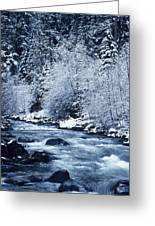 Usa, Willamette National Forest Oregon Greeting Card by Greg Vaughn