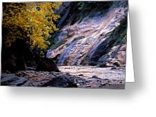 Utah - Zion National Park Virgin River 8 Greeting Card