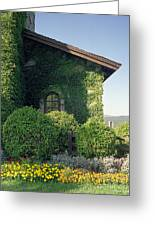 V Sattui Winery Vintage View Greeting Card by Michelle Wiarda