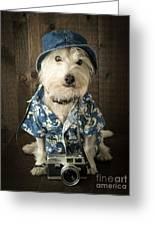 Vacation Dog Greeting Card