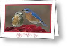 Val03 Greeting Card
