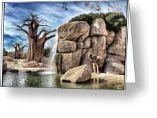 Valencia Elephant Greeting Card