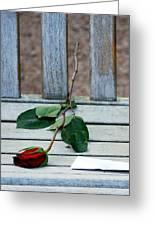 Valentine Rose. Greeting Card