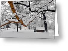 Valley Forge Winter 9817 Greeting Card