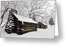 Valley Forge Winter 9887 Greeting Card
