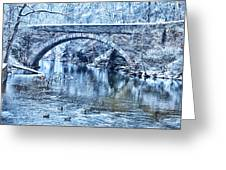 Valley Green Ducks In Winter Greeting Card