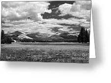 Valley In Yosemite Greeting Card