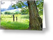 Valley View Along Flat Creek Rd Greeting Card