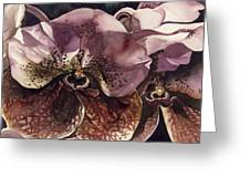 Vanda Orchid Greeting Card