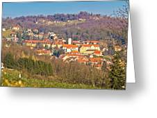 Varazdinske Toplice - Thermal Springs Town Greeting Card