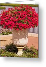 Vase Of Petunias Greeting Card