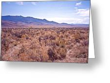 Vast Desolate And Silent - Lyon Nevada Greeting Card