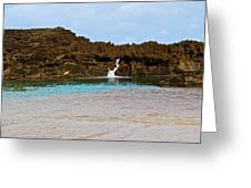 Vega Baja Beach 3 Greeting Card