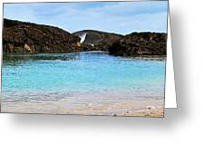 Vega Baja Beach 4 Greeting Card
