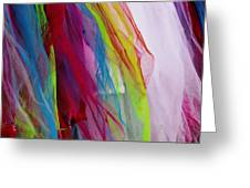 Veiled Color Greeting Card