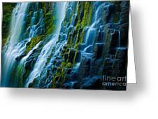 Veiled Wall Greeting Card
