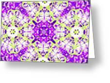 Velvet Blanket Greeting Card