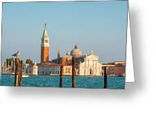 Venetian Dove Greeting Card