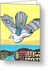 Venice Seagull Greeting Card by Don Koester