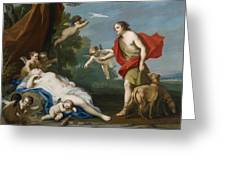 Venus And Adonis Greeting Card
