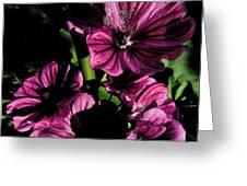 Verbena Greeting Card