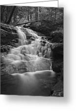 Vermont Forest Waterfall Black And White Greeting Card