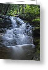 Vermont New England Waterfall Green Trees Forest Greeting Card