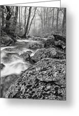 Vermont River Fog Mount Mansfield Black And White Greeting Card
