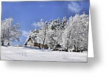 Vermont Winter Beauty Greeting Card