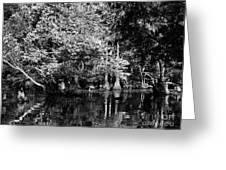 Vernon Lake Four Greeting Card