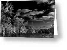 Vernon Lake Three Greeting Card