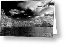 Vernon Lake Two Greeting Card
