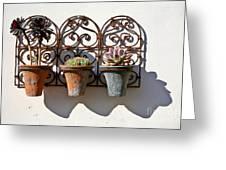 Vertical Cacti Garden Greeting Card