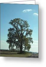 Vertical Tree Greeting Card