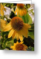 Vertical Yellow Flowers Greeting Card