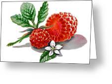Artz Vitamins A Very Happy Raspberry Greeting Card