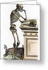 Vesalius: Skeleton, 1543 Greeting Card