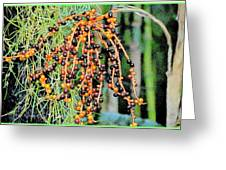 Vibrant Berries Greeting Card
