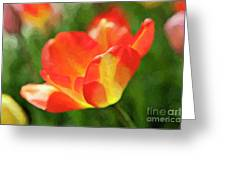 Vibrant Colorful Tulips Greeting Card
