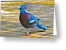 Victoria Crowned Pigeon In San Diego Zoo Safari In Escondido-california Greeting Card