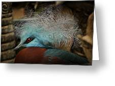 Victoria Crowned Pigeon In Tribal Decor Greeting Card