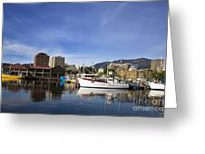 Victoria Dock Hobart Tasmania Greeting Card