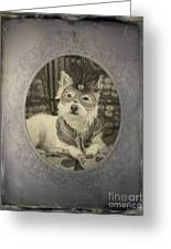 Victorian Westie Greeting Card